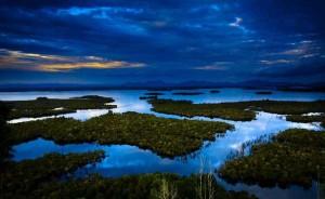 Madu Hutan Kapuas Hulu